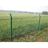 东莞养殖场围网 围栏护栏厂家 安全围栏网厂家 镀锌铁丝网片 铁路防护栅栏