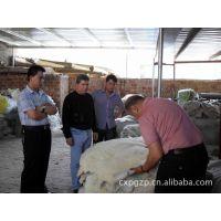 厂家直销整张羊皮 羊剪绒皮毛一体 鞋里皮服装内胆反穿绵羊皮