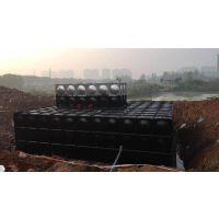 专业定制抗浮式地埋箱泵一体化泵站 设施要求