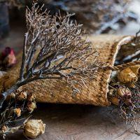 定做【山水】珊瑚造型枯树枝仿真花艺装饰插花摆件枯掬涵日式中式