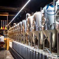 300L小型自酿啤酒设备,火锅烧烤餐厅专用