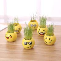 创意迷你植物小盆栽青草塑料草娃娃桌面卡通草头娃生态瓶绿色盆栽