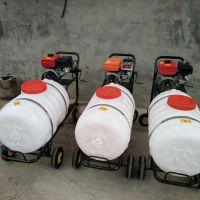 园林高压喷雾器 大棚汽油打药机 养殖场消毒喷雾机