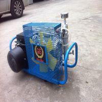 GSX-100呼吸器充气泵 220-380V空气呼吸器充气泵