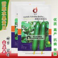 德蔬 甜脆水果黄瓜种子 高产水果黄瓜 四季菜籽 阳台盆栽蔬菜种