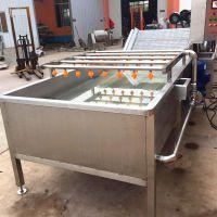 供应富扬牌小型洗菜机 4000型连续式蕨菜清洗机 气泡喷淋清洗机