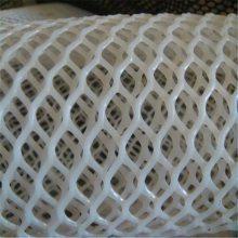上海塑料网 井下用塑料网 育雏网一斤多少平方