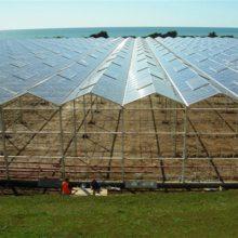 玻璃智能温室大棚建设-盐城玻璃智能温室-瑞青农林(查看)