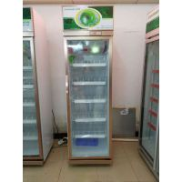 广东绿缔冷柜展示柜风幕柜水果柜厨房柜配菜柜