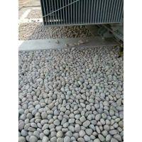 开封天然鹅卵石批发变压器鹅卵石/水处理鹅卵石滤料
