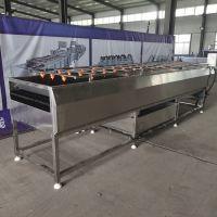大枣清洗流水线 全自动不锈钢制造 多功能清洗设备 果蔬深加工的好帮手