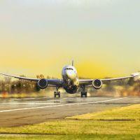 到马里国际快递|DHL快递到马里几天可以到|马里DHL快递服务|东莞到马里寄DHL快递