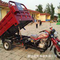厂家直销420车帮韩式减震自卸载货汽油三轮车 农用三轮家用拉货车