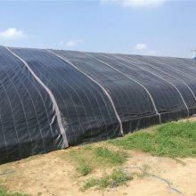 三门峡温室大棚-温室大棚生产厂家-亿农农业(优质商家)