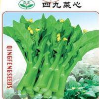 批发蔬菜种子 四九菜心种子 菜心菜苔 蔬菜种子 阳台盆栽10克