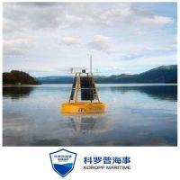 北海厂家专业定制总氮检测浮标 实时检测航标