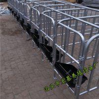四川质优价廉的养猪设备猪用定位栏保胎母猪栏厂家直销