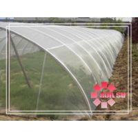 【厂家直销】防虫网、塑料防虫网、蔬菜防虫网、80目防虫网