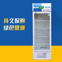 单门直冷保鲜柜HR-248厂家直供商用立式冷藏展示柜支持定制保鲜柜