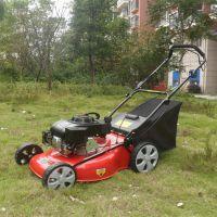 供应佳诚牌草坪修剪机 手推式割草机 园林绿化修边机