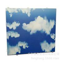 彩色铝合金板 厂家供应大厅印花喷涂铝合金制品 彩绘铝单板定制
