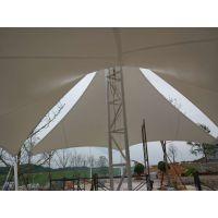 厂家直供,拥有十年膜结构,篷房设计制作安装经验,景观张拉膜结构,广场飞燕索拉膜