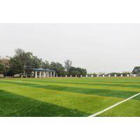 人造草足球场地 沥青混凝土基础施工分类 质量要求