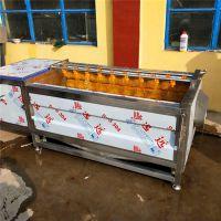 定做土豆清洗机 农产品加工设备厂家