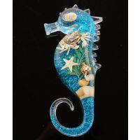海马海洋创意冰箱贴 手工工艺品 海星海螺标本 树脂滴胶冰箱贴