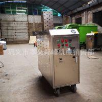 商用方便蒸汽清洁器 高压蒸汽洗车机 移动式蒸汽洗车机