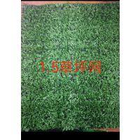 迪吉装饰草坪 幼儿园草坪 草皮背景墙 pe环保草皮