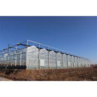 山西农业生态扶贫玻璃温室大棚565中空墙、30cm抗雪8000平方型施工报价