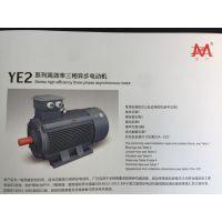 YE2-355L2-4-355KW