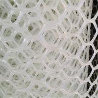 育雏用塑料网 养鸡育雏塑料网 特种家禽养殖网