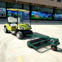 厂家直销AS-002 2人座后驱动香槟色高尔夫球场专用捡球车