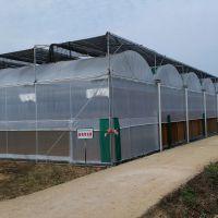 蔬菜连体大棚厂家享国家补贴热镀锌