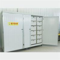 豆芽机商用 发绿豆芽的机器鑫丰制造厂家