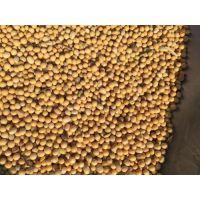 青岛进口哪些国家大豆是免关税的