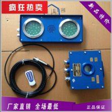 ZSB127/127VAC高低液位自动报警-专业生产各种高低水位报警器