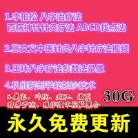 张文义李柏松王玮中医针灸八字疗法美容丰胸减肥缩阴视频30G自学