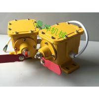 钢绳式纵向撕裂保护装置ZL不二之选