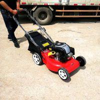 新型草坪修剪机 小型收割割草机