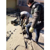 南京市各区专业渣土清运.水泥砂石料运输.室内外墙壁拆除破碎中心