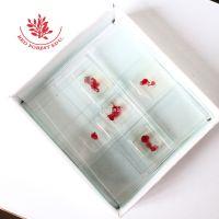 生物玻片教学实验室用切片囊虫结构清晰染色鲜艳囊虫装片