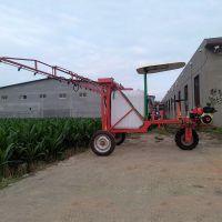 葡萄园远程喷雾器 蔬菜基地打药机 普航高效三轮车打药机厂家