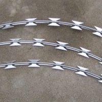 山东厂家供应 刀片刺绳热镀锌 围墙防护网 刺丝 欢迎订购