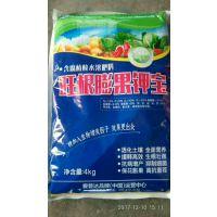 花椒专用冲施肥,高钾高钙含腐殖酸水溶肥