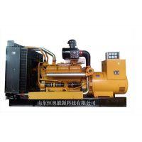 威海高品质国产上柴240KW柴油发电机组