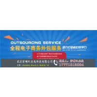 武汉网页设计公司-企业网站制作公司哪家好-武汉好喇叭在线