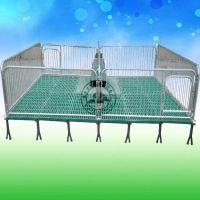 保育床猪用设备厂家、小猪育肥床制作/定做